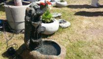 Schildkroetbrunnen